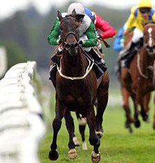 English: Racehorse Attraction approaching the ...