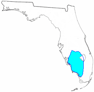 The remaining Seminoles in Florida were allowed to stay on an informal reservation in southwest Florida at the end of the Second Seminole War in 1842.