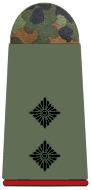 Lieutenant (Lt)