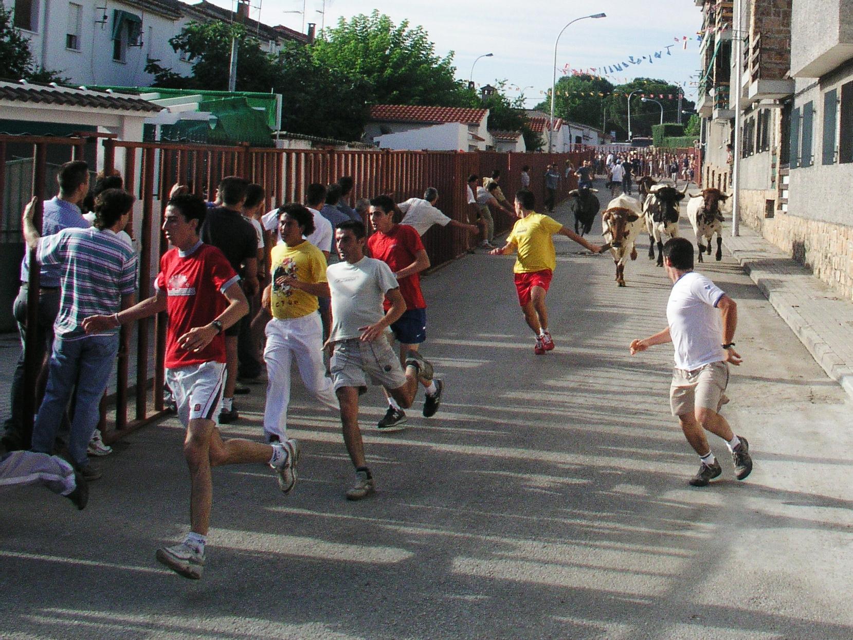 http://upload.wikimedia.org/wikipedia/commons/3/33/Aldea_del_Fresno_Encierro01.jpg