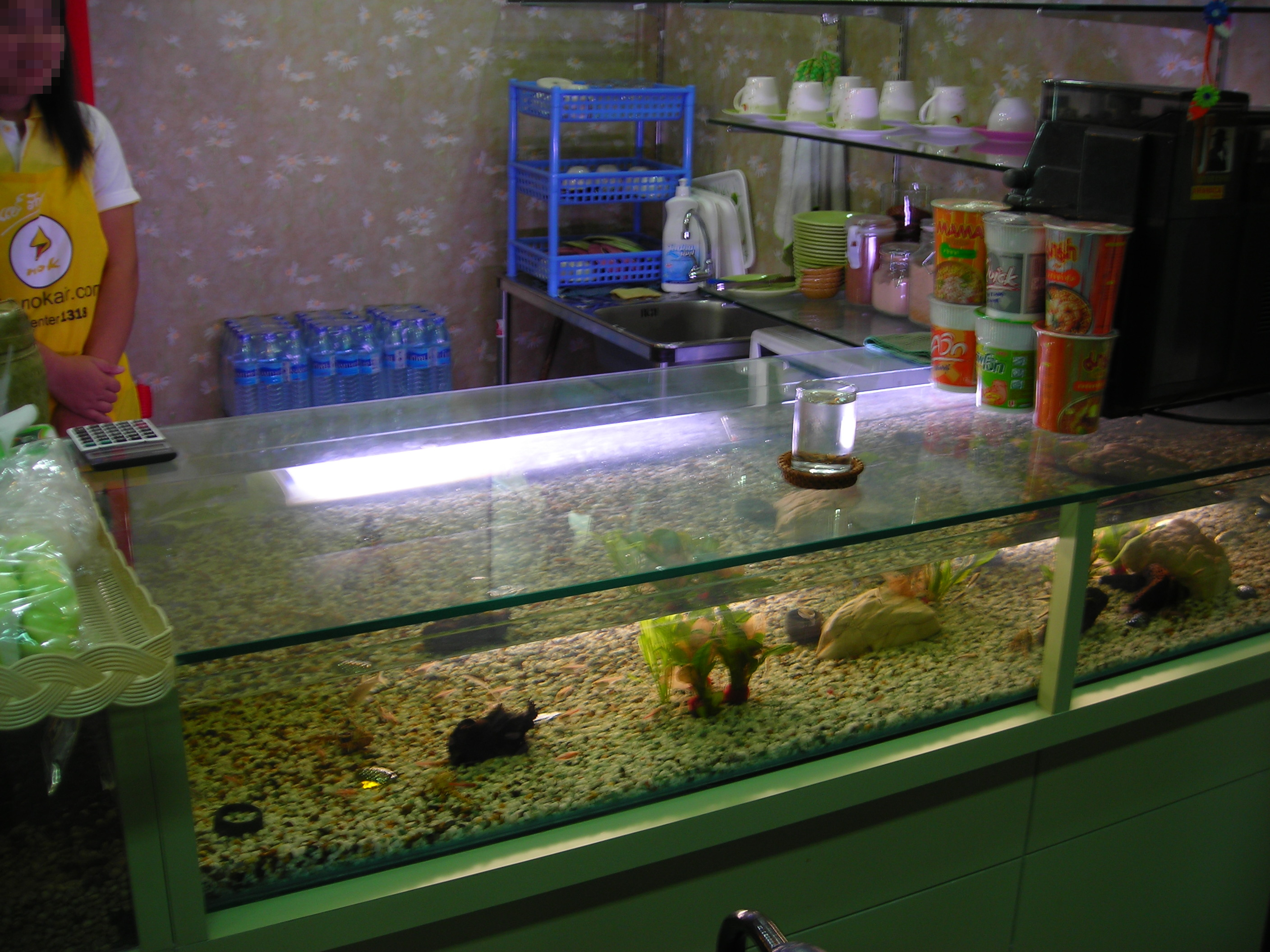 File bar counter with aquarium jpg wikimedia commons for Fish tank bar