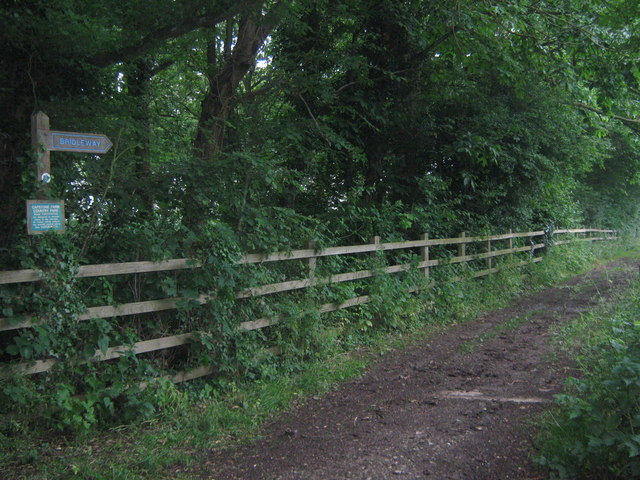 Bridleway in Capstone Country Park - geograph.org.uk - 1369835