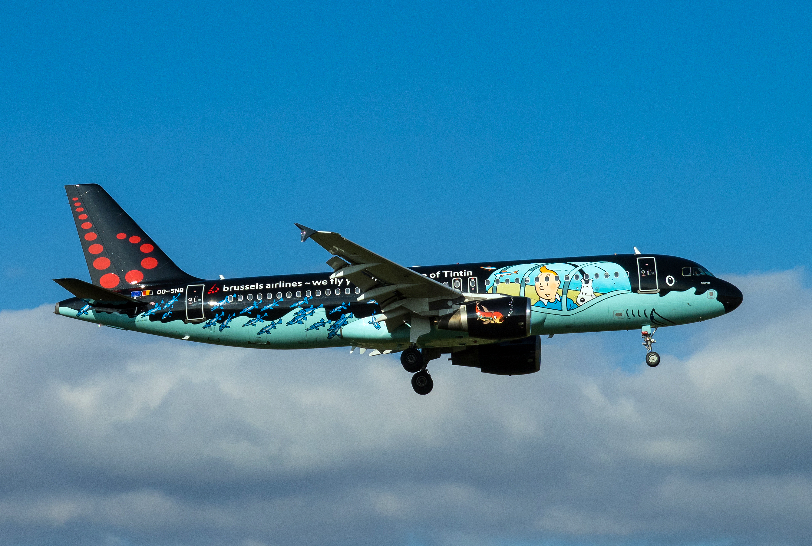 Brussels Airlines (Tintin), Airbus A320-214, OO-SNB (30222450054).jpg