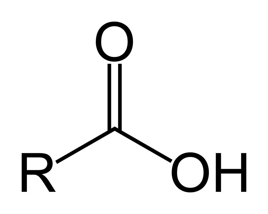 Ch 8 - Organic Chemistry - Chemistry K