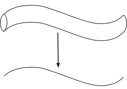 A tubular surface and corresponding one-dimensional curve.