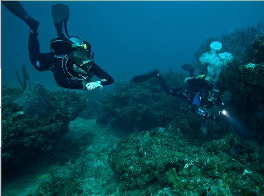 Scuba Diving Long Beach Island Nj