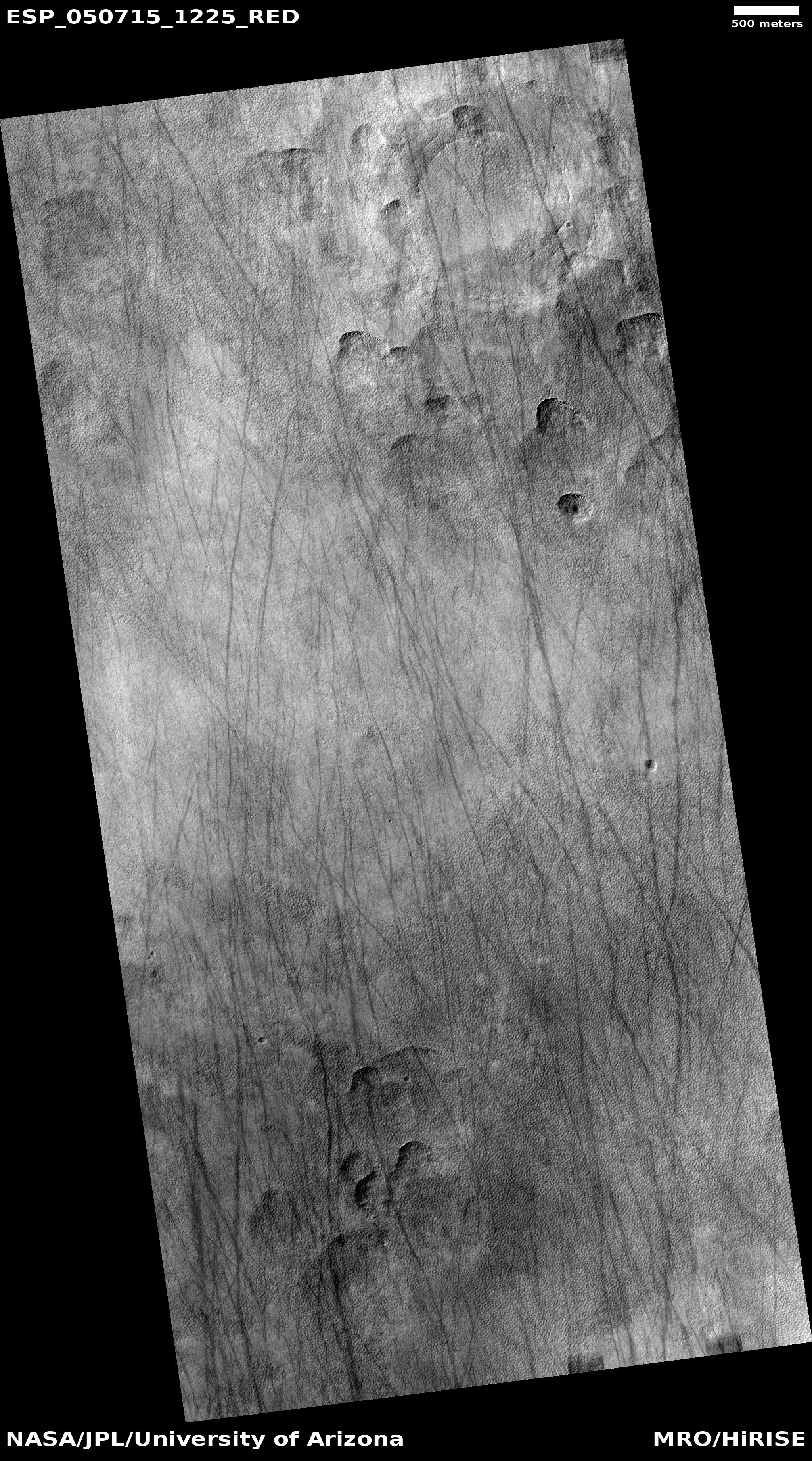 Dust devil tracks and scalloped topography, as seen by HiRISE under HiWish program