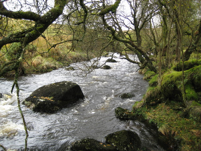 East Dart River north of Postbridge - geograph.org.uk - 1026255