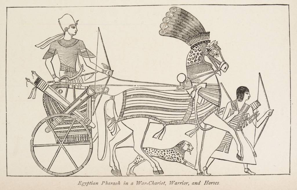 Egyptian Pharaoh in a War-Chariot, Warrior, and Horses. (1884) - TIMEA