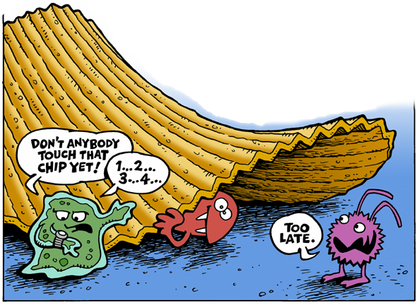 Cartoon of germs contemplating food dropped on the floor