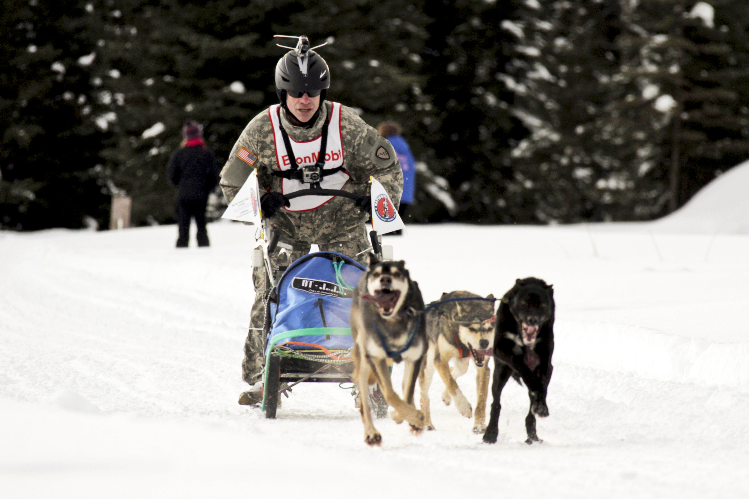 File:Flickr - The U.S. Army - Sled Dog Race.jpg ...