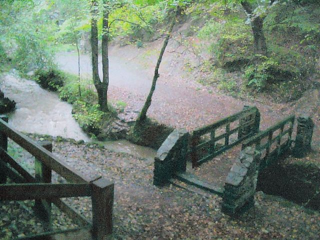 Footbridge on the river Clyne in Clyne Valley Country Park - geograph.org.uk - 266552