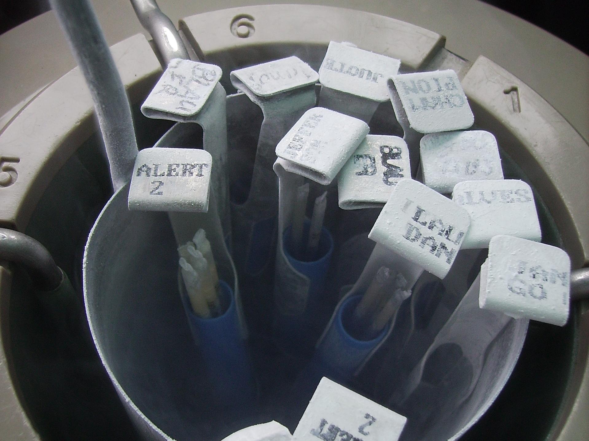 positivo-embriones-congelados