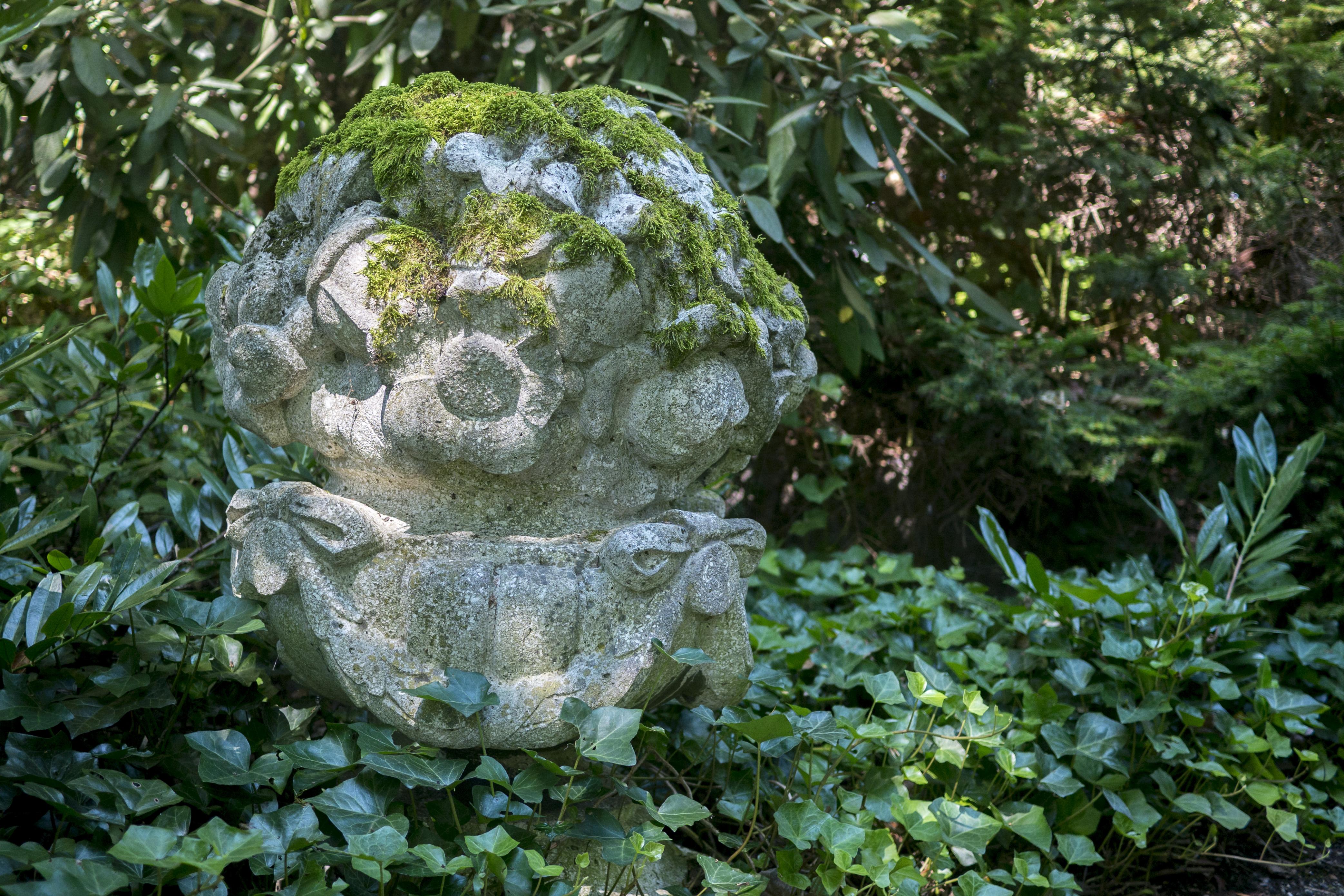 Gartenbau Linz file linz hatschekvilla gartenbaudenkmal 12 jpg wikimedia commons