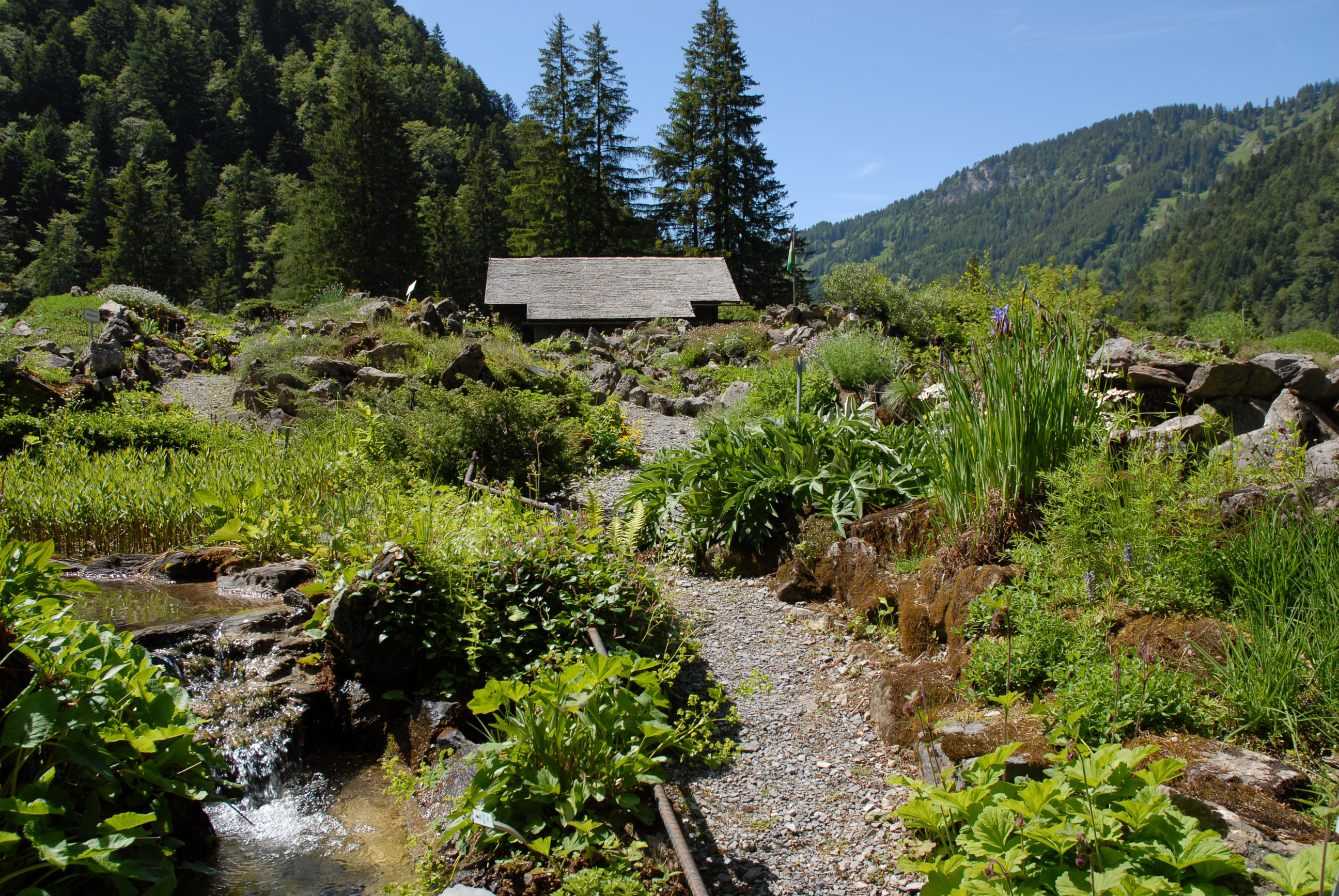 Mus e et jardins botaniques cantonaux for Jardin wikipedia
