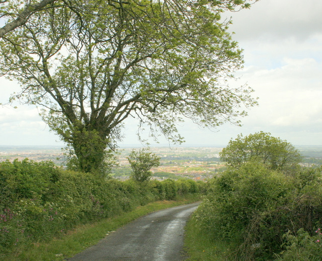 North east on East Dundry Lane - geograph.org.uk - 1324251