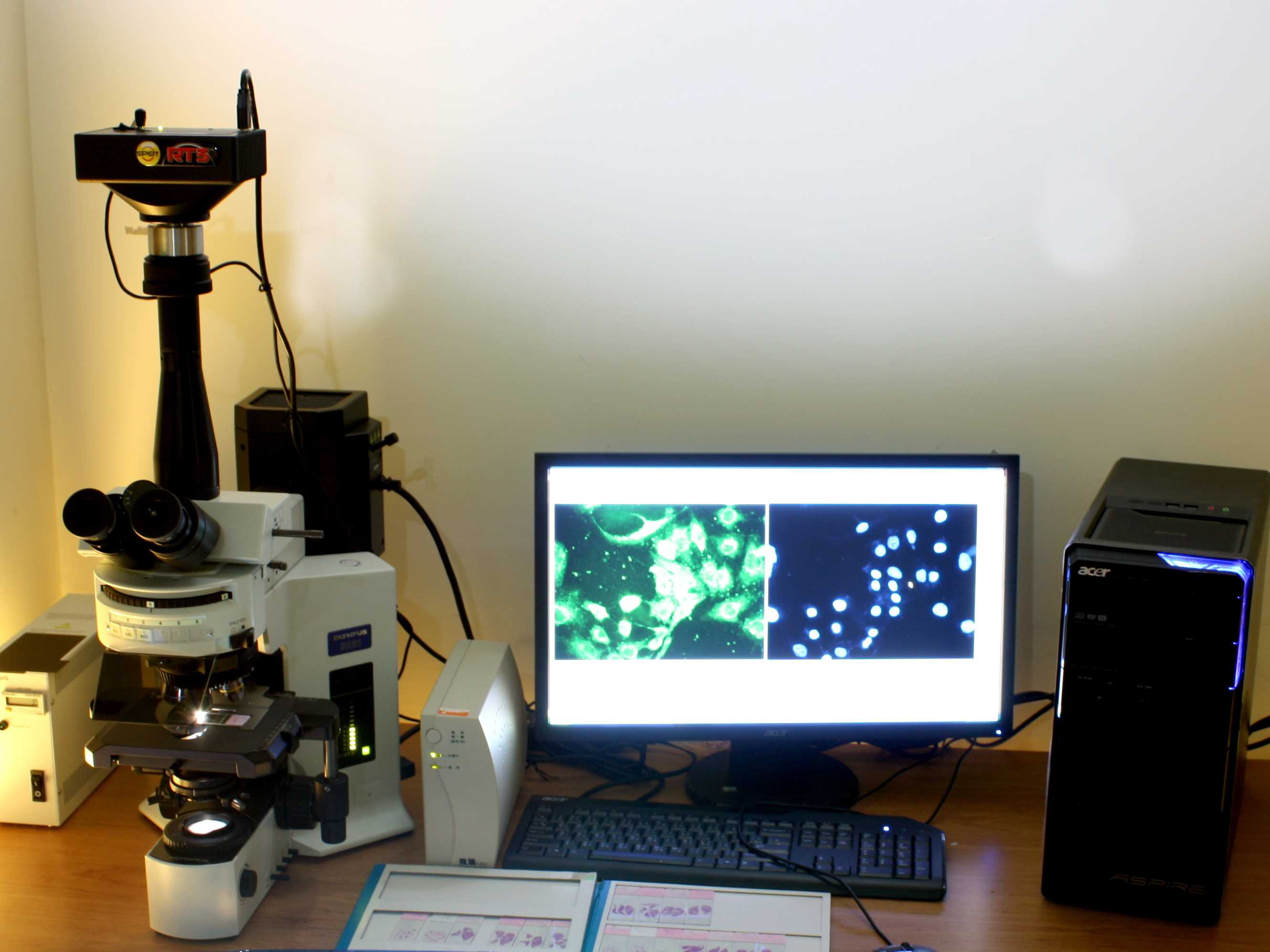 olympus bx41 fluorescence microscope manual
