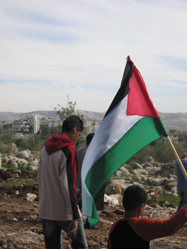 Palestinian flag.jpg