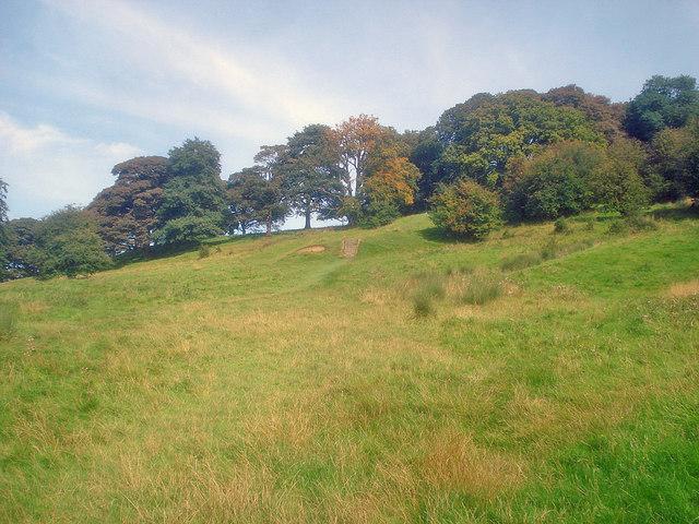 Path to Hardwick Hall - geograph.org.uk - 1593421