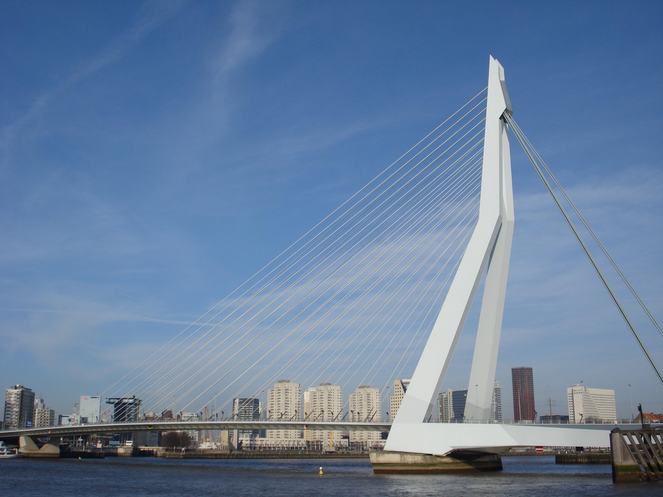 Bestand Rotterdam Erasmusbrug Jpg Wikipedia