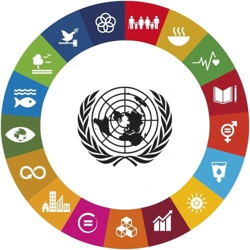 Sviluppo Sostenibile Wikipedia