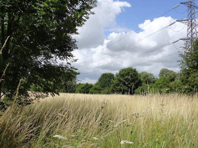 Staines Moor - geograph.org.uk - 1447307