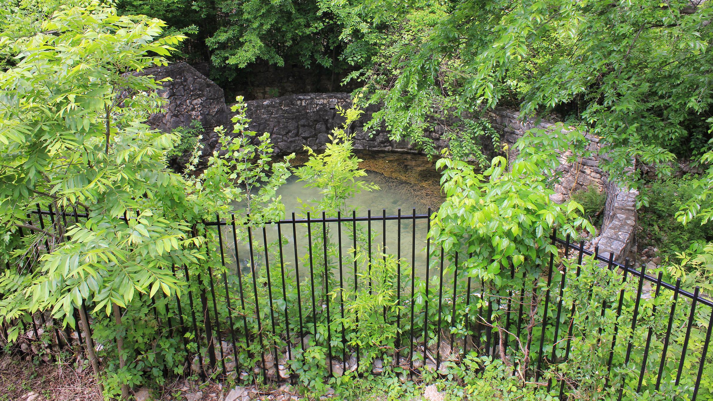 File:Sunken Garden Spring Austin Texas