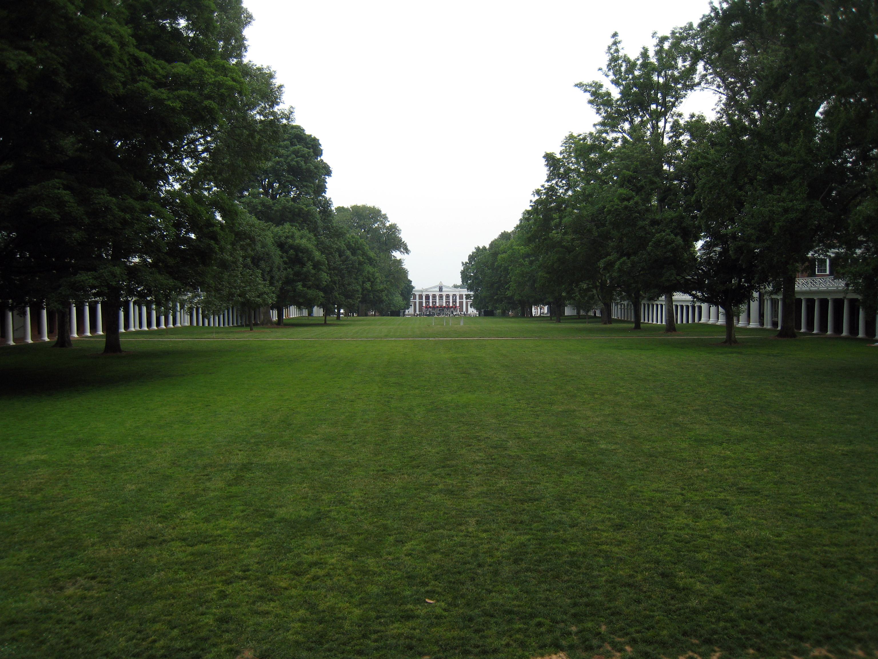 Lawn - Wikipedia