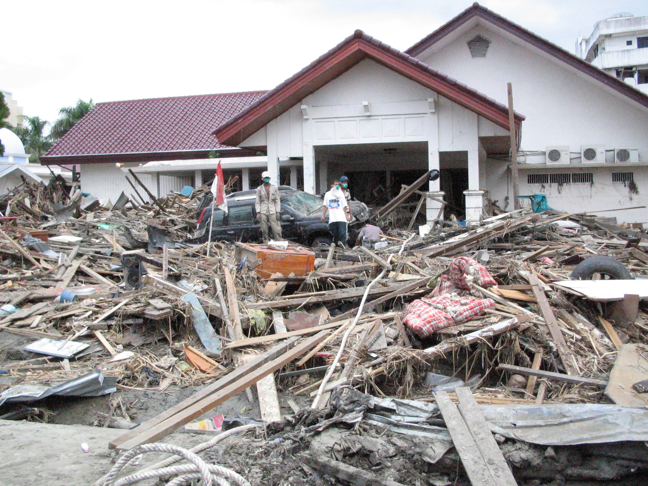 Tsunami The Aftermath