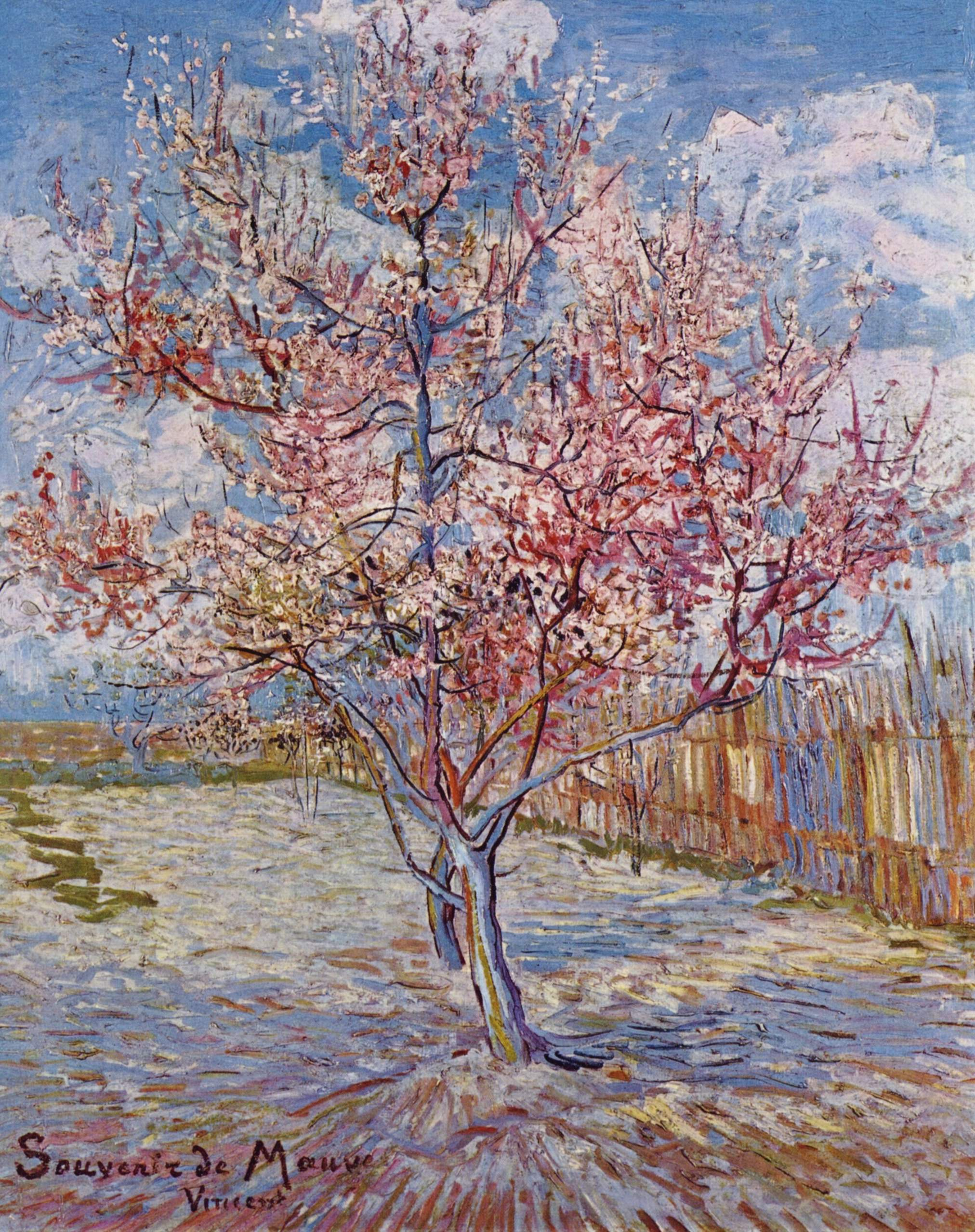 Flowering Orchards , Wikipedia