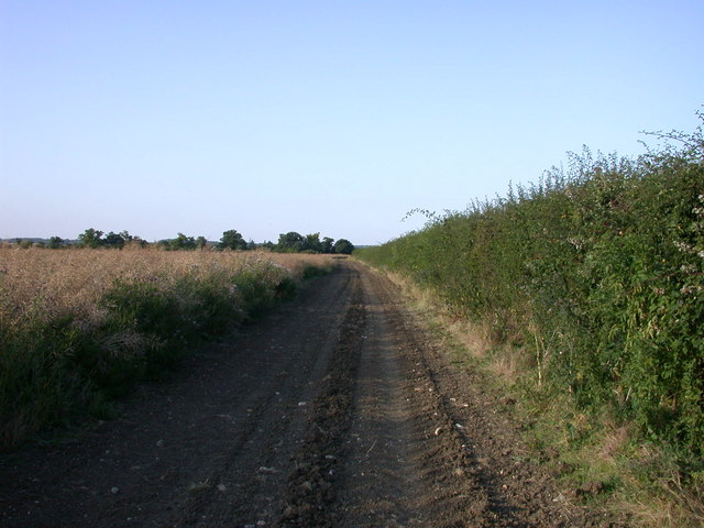 Wimpole Way near Kingston - geograph.org.uk - 896041