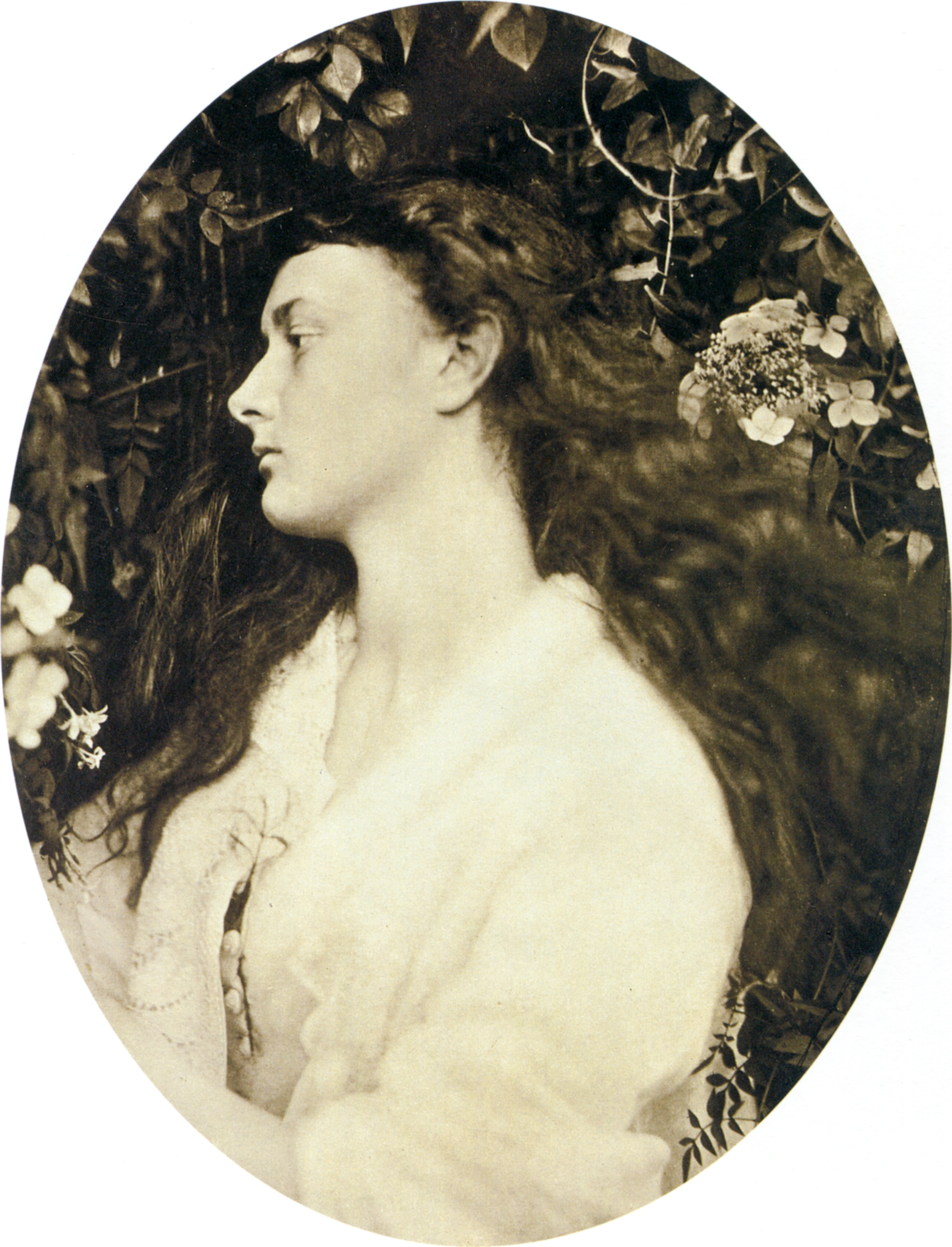 Julia Margaret Cameron Alice Liddell