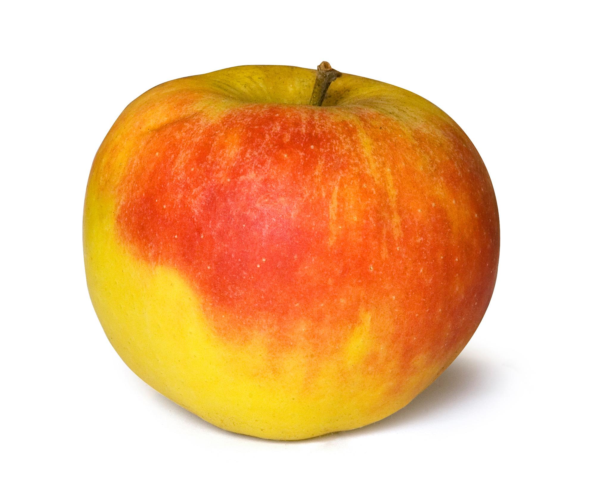 Image Result For Basket Pf Apples