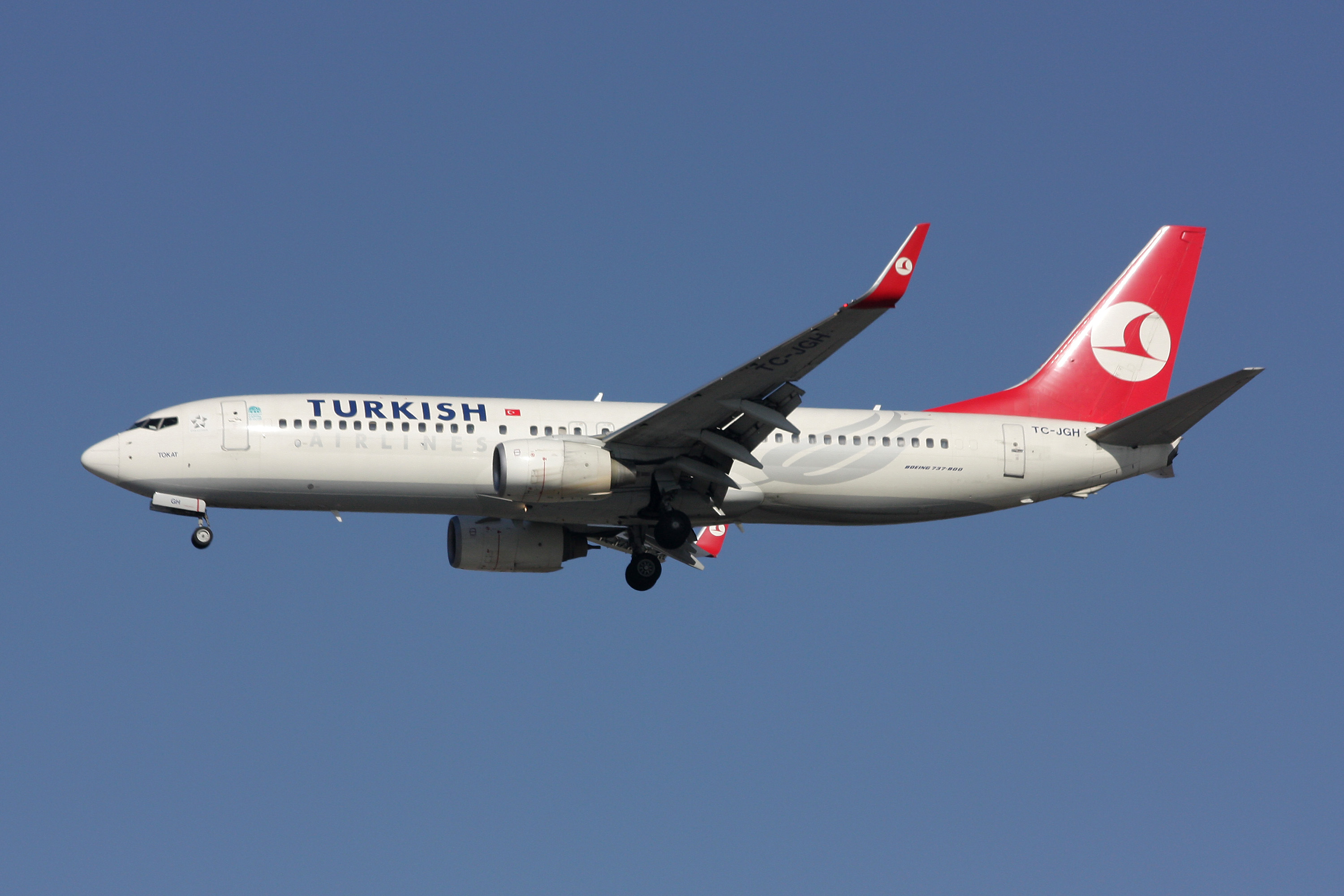 File:Boeing 737-800 Turkish Airlines.jpg - Wikimedia Commons