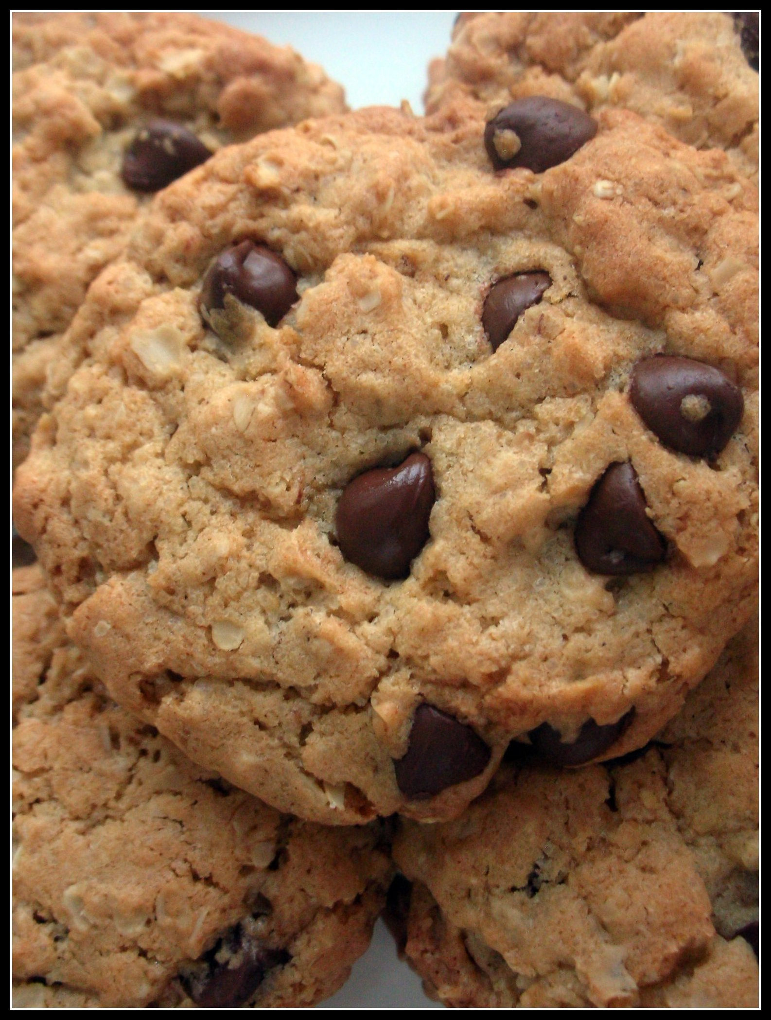 Oatmeal Chocolate Chip Cookies Recipes — Dishmaps