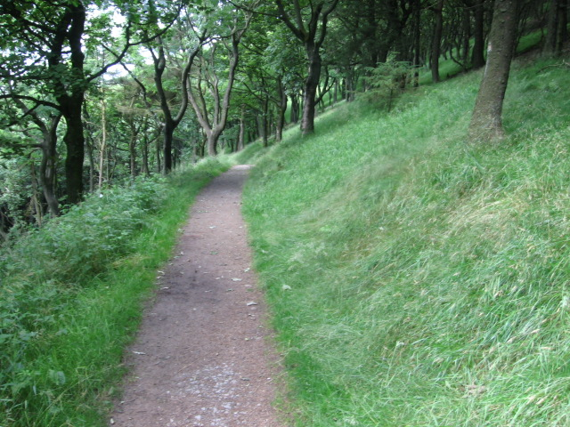 Footpath in Macclesfield Forest - geograph.org.uk - 1413855