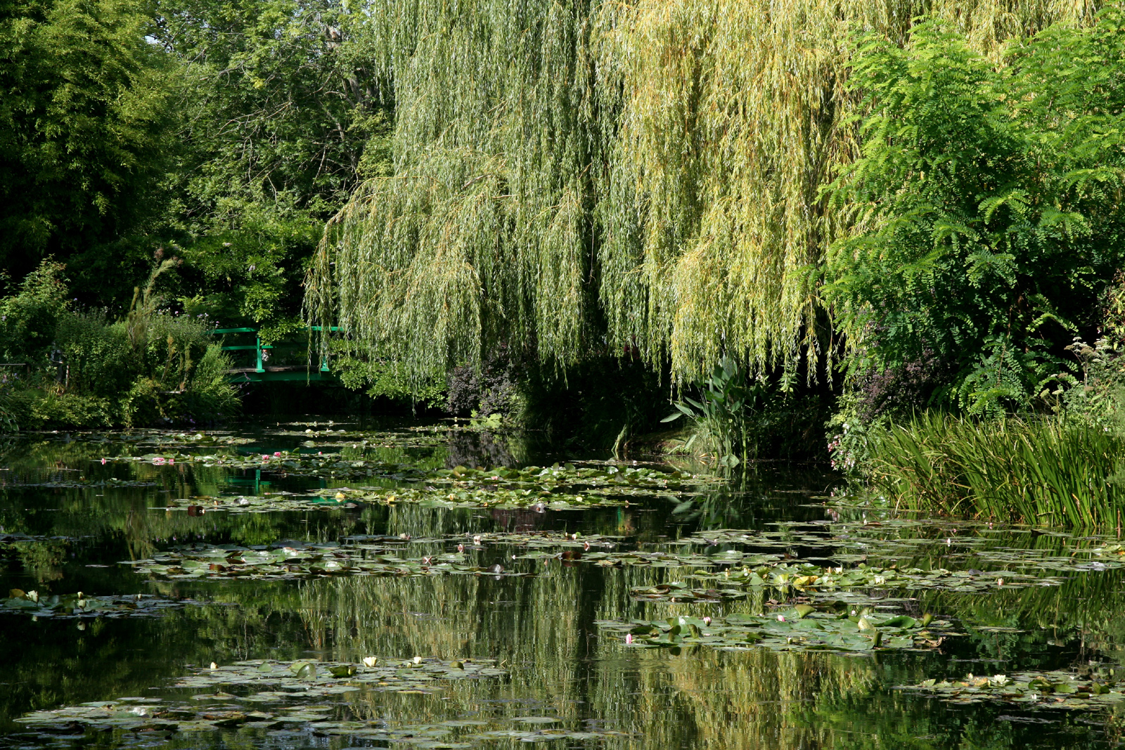 File giverny jardin monet 13 jpg wikimedia commons for Jardines monet