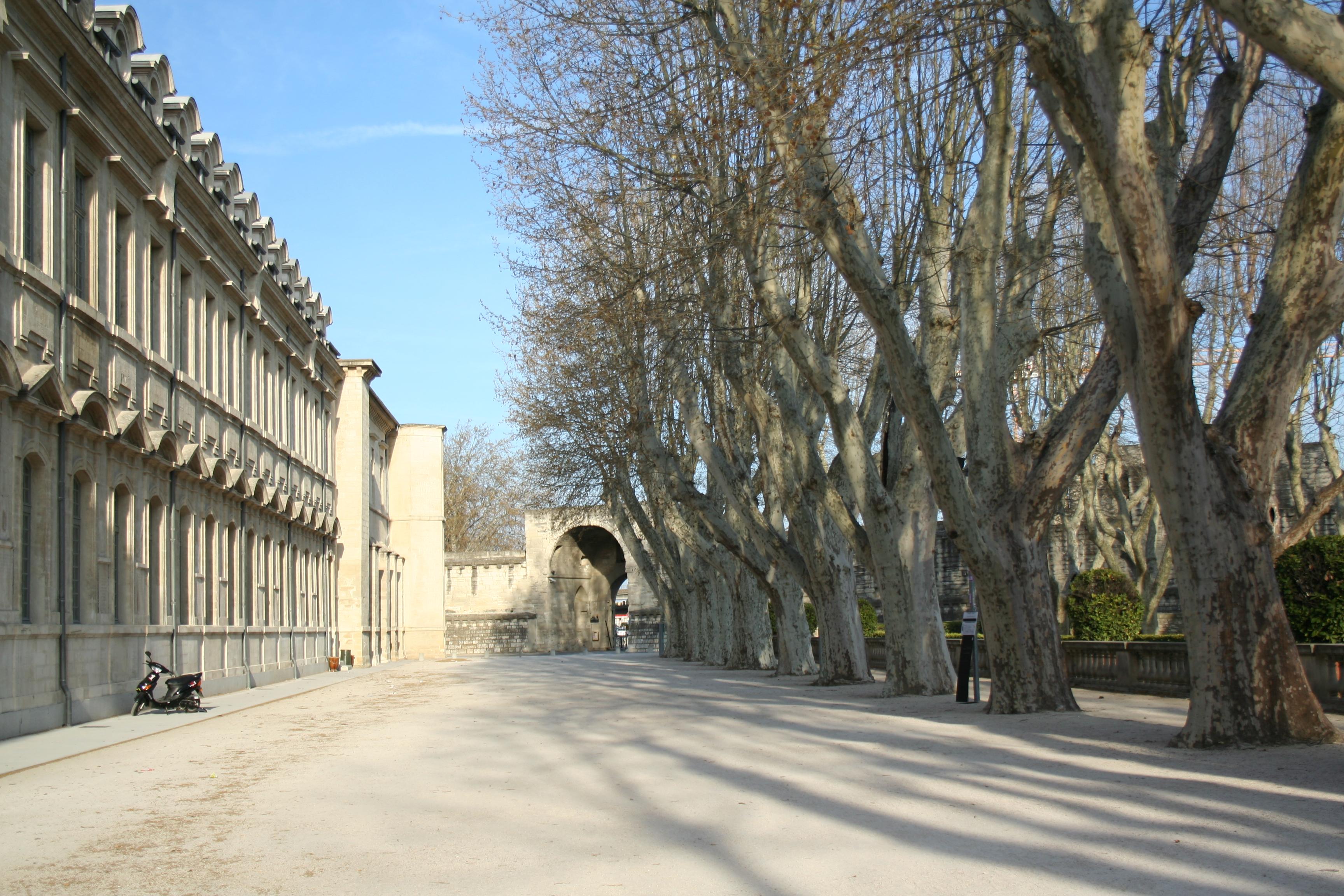 rencontre hetero Avignon