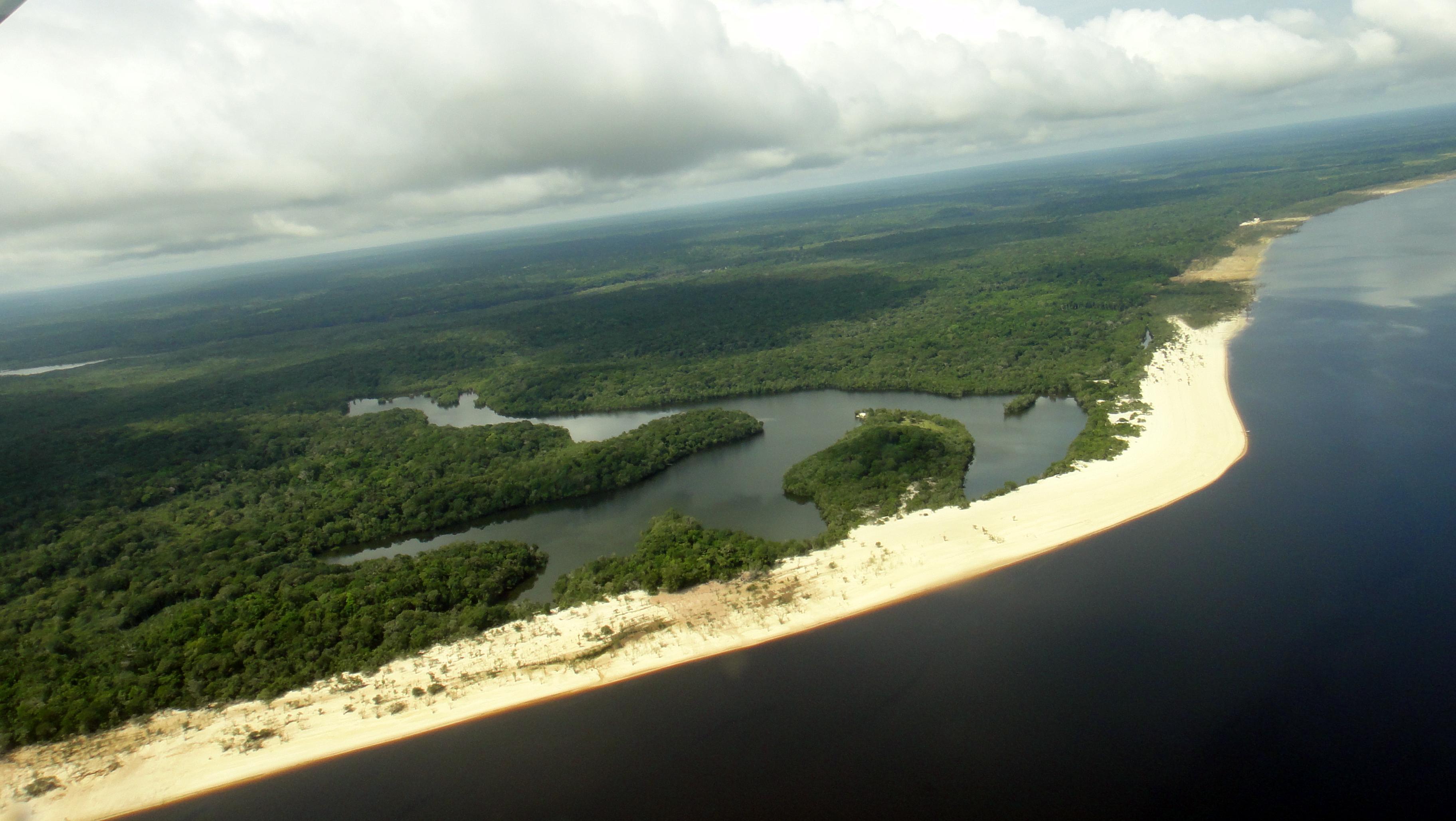 Ficheiro:Parque Nacional de Anavilhanas - Amazonia.jpg – Wikipédia, a enciclopédia livre
