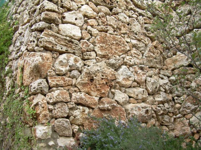 גדר אבן ירושלמית