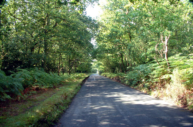 Prestons Road, Hayes Common BR2 - geograph.org.uk - 43859