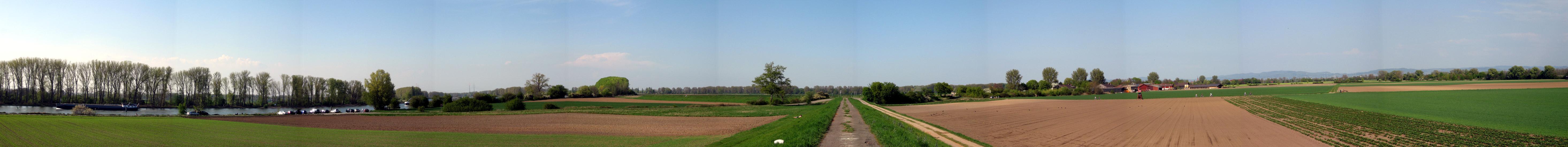 Rhein-Radweg