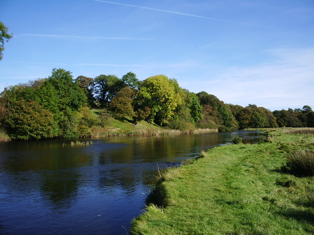 River Derwent - geograph.org.uk - 578219