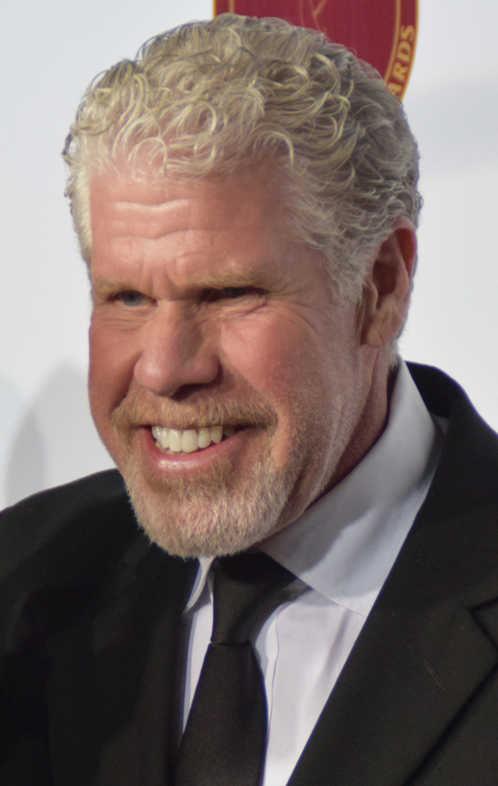 Ron Perlman earned a  million dollar salary, leaving the net worth at 15 million in 2017