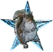 Squirrel barnstar.png