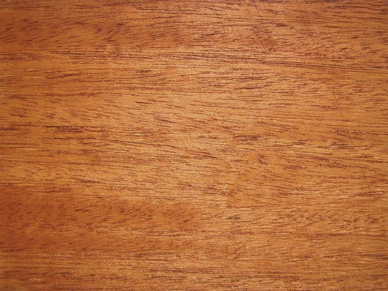 Dark Mahogany Wood Color ~ Mahogany wikipedia