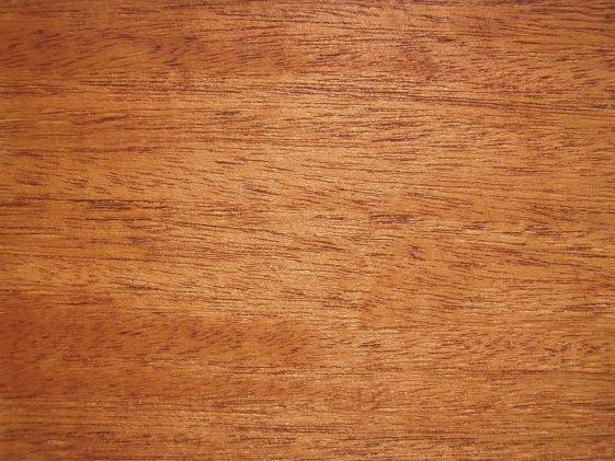 Ficheiro:Swietenia macrophylla wood.jpg