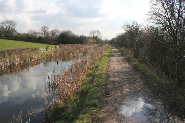 The Nottingham Canal Nature Reserve - geograph.org.uk - 1198307