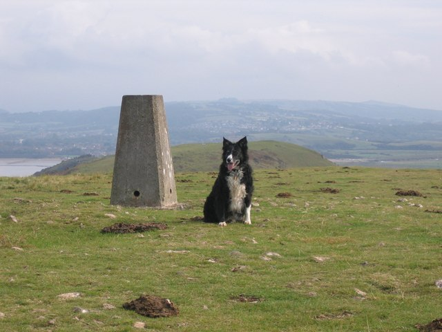 Trig Point - geograph.org.uk - 586726