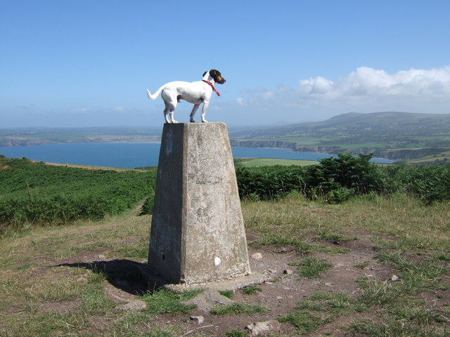 Trig point on Dinas Head - geograph.org.uk - 301958
